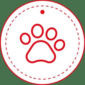 Mascotas